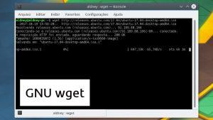 Como fazer download de arquivos pelo terminal